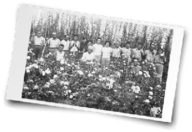 Foto antica azienda 3