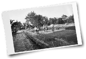 Foto antica azienda 4